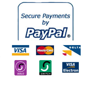 Binary option that accepts paypal